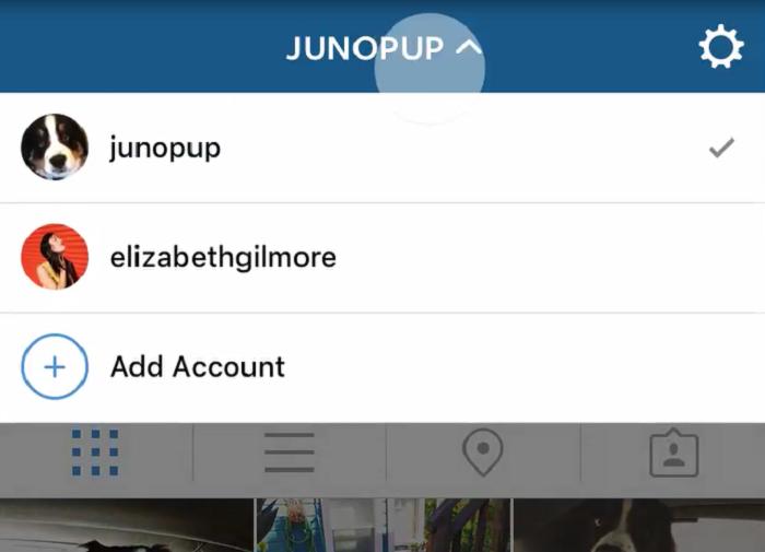 Instagram Multi